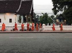Morning alms in Luang Prabang. By SUN Jingyu Cecilia, 2018.